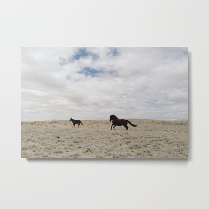 San Juan Horse Run Metal Print