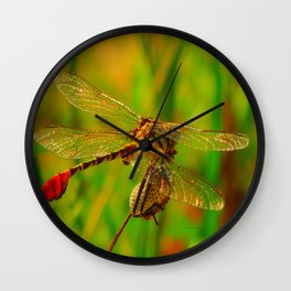 Texas Dragonfly Wall Clock