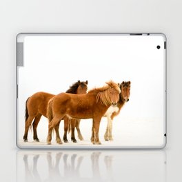 Wild Pony Mares, Assateague Island Laptop & iPad Skin