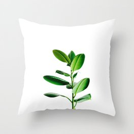 Greenery (Color) Throw Pillow
