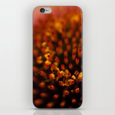 Red Petals with Pollen iPhone & iPod Skin