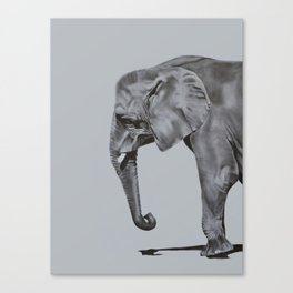 Ivory - Elephant Painting in Black & White Canvas Print