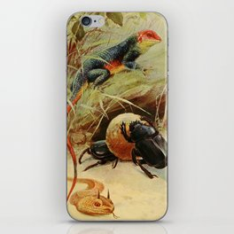 Kuhnert, Friedrich Wilhelm (1865-1926) - Wild Life of the World 1916 v.3 (Agama, Horned Viper, iPhone Skin