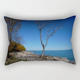 So Near, But Yet So Far #1 (Chicago Northerly Island Collection) Rectangular Pillow