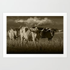 Sepia Tone of Texas Longhorn Steers under a Cloudy Sky Art Print