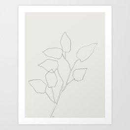 Floral Study no. 5 Art Print