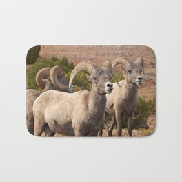 Welcoming Committee Bath Mat