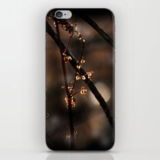 Forest Shadow Spirits iPhone & iPod Skin