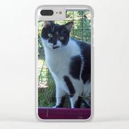 CHAT SUR UN BALCON Clear iPhone Case