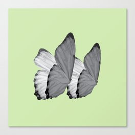 BUTTERFLY SERIES (1) Canvas Print