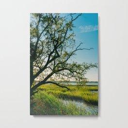 Charleston Sunset III Metal Print