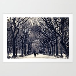 Central Park in Black & White Art Print