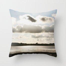 A Gulp Throw Pillow