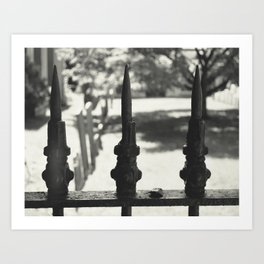 Iron Fence Art Print
