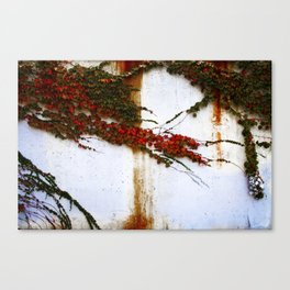 Impermanence  Canvas Print