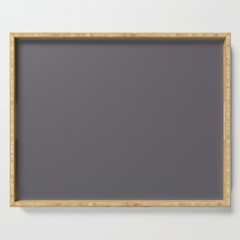 Into The Shadows Dark Grey Solid Color Pairs To Sherwin Williams Cloak Gray SW 6278 Serving Tray