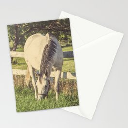 Mare and Foal // Horses Stationery Cards