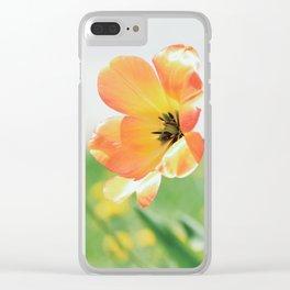 Bright Orange Tulips in Sunlight Clear iPhone Case
