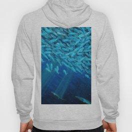Oceans of Plenty Hoody