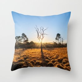Coronation Plantation - Ireland (RR220) Throw Pillow