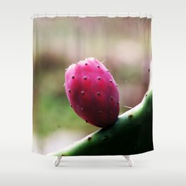 Prickly Pear Cactus Fruit Shower Curtain