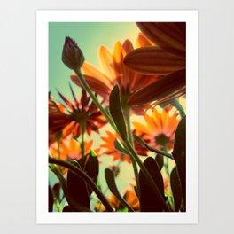 Flowers Underneath Art Print
