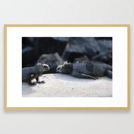 Exhausted Iguanas Framed Art Print