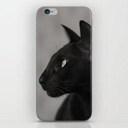 Oriental black cat iPhone Skin