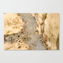Stream of Bubbles Canvas Print
