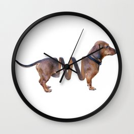 Sausage Dog Spring Wall Clock
