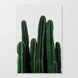 Cactus I Canvas Print