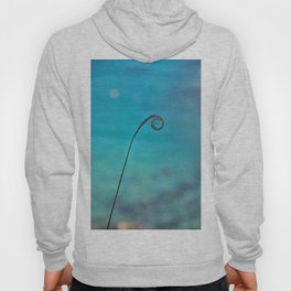 Curl of the Sea Hoody