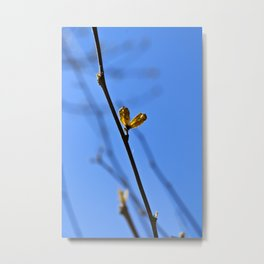 Pair of Life Metal Print