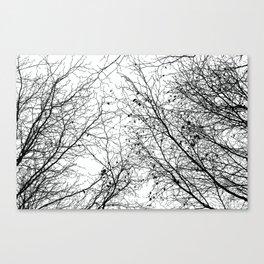 Tree Silhouette Series 2 Canvas Print