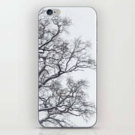 Winter Scene iPhone Skin
