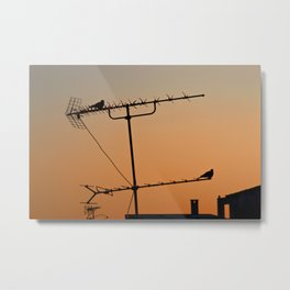 Starring out of the window Metal Print