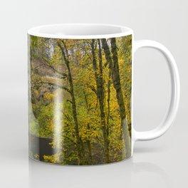 Best of Silver Falls Coffee Mug