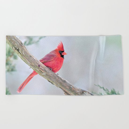 Grumpy Cardinal Beach Towel