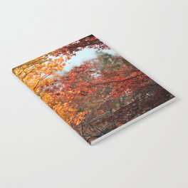 Colorful Japanese Maple Trees in Fall Photography Notebook