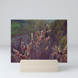 Forest secrets Mini Art Print