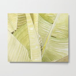 Banana Leaves Watercolor Metal Print