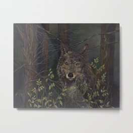wolf in the woods, karla hall Metal Print