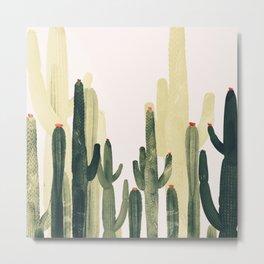 Green Cactus 4 Metal Print