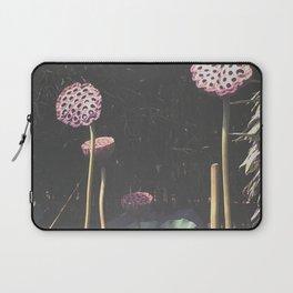 Lotus Seed Heads Laptop Sleeve