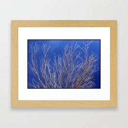#89 Framed Art Print
