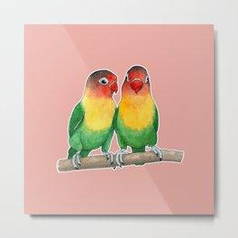 Fischer's lovebirds Metal Print