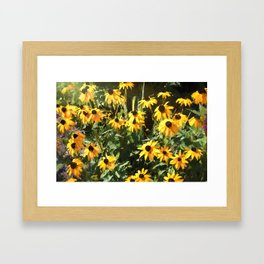 Black-eyed Susan Yellow Flowers Framed Art Print