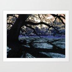 Oak Shadows Lavendar Art Print