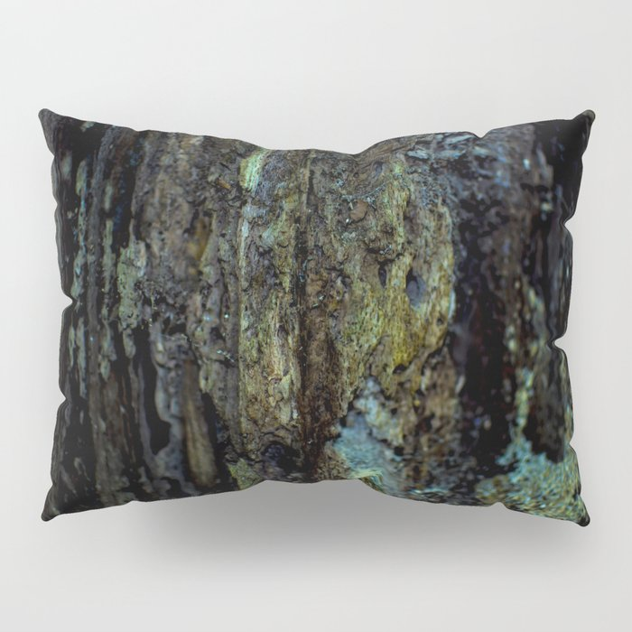 Colourful Wood Rot Pillow Sham
