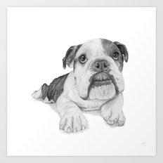 A Bulldog Puppy Art Print